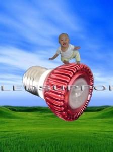 Ledchina Logo 224×300